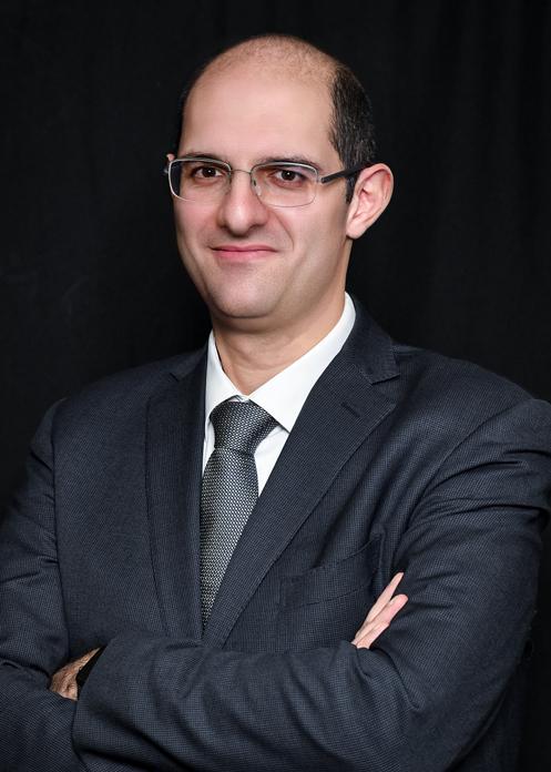 السيد محمود الشوا